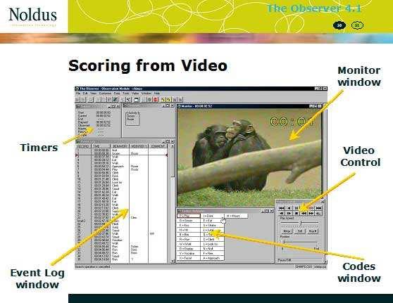 行為觀察記錄分析系統